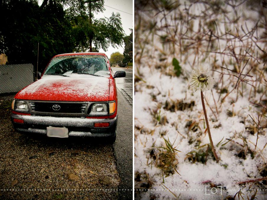snow2011-1