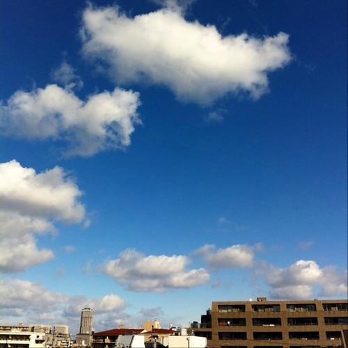 今日の写真 No.126 – 昨日Instagramへ投稿した写真(2枚)/iPhone4 + Photo fx、Pro HDR