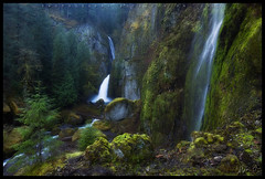 Nature's Amphitheater (OhYo) Tags: water oregon canon landscape moss spring rocks stream searchthebest hike trail pacificnorthwest 1635l wahclellafalls 5d2