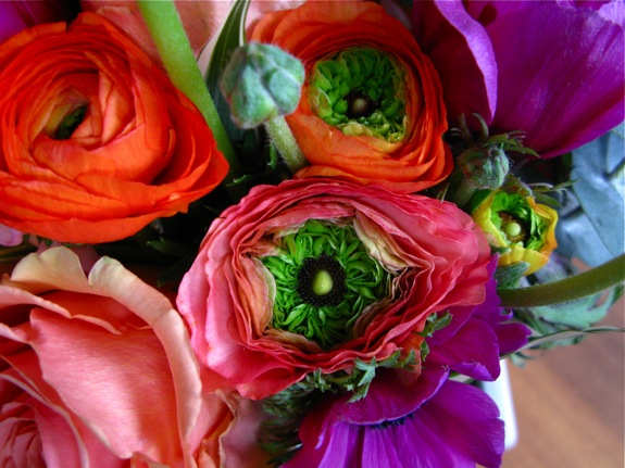 flowers ranunculus anemone rose orange pink 004