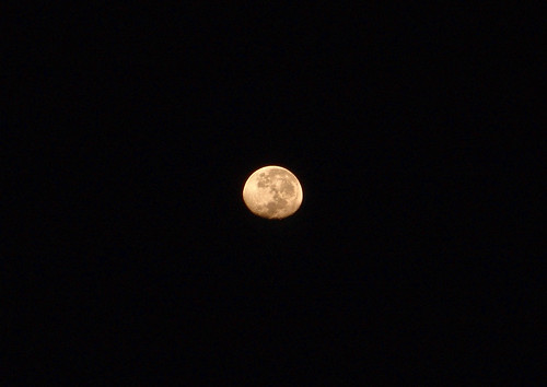 luna 6 (1)
