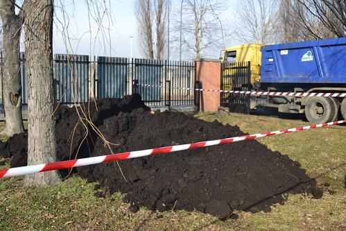 L'arrivo del compost 19