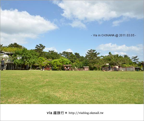 【沖繩自由行】Via帶你玩沖繩~來趟浪漫的初春沖繩旅〈行程篇〉23