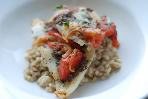 tursk tomatite ja tapenadega, lisandiks orsoto/cod with tomatoes and tapenade, orzotto