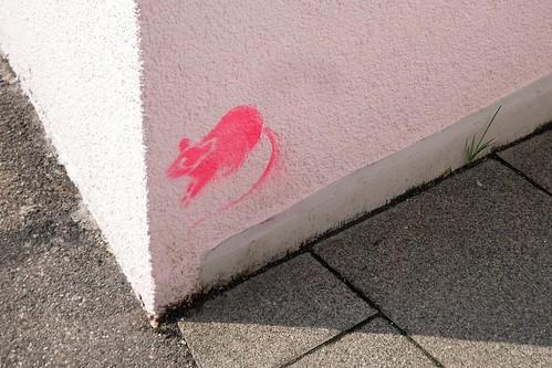 Pink rat