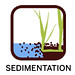 IGOR chip- sedimentation 150