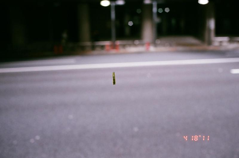 caterpillar_11