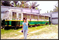the die hard and a die hard fanatic (bhettina limchu) Tags: bus green yellow japanese die garage philippines hard terminal bhe trans tas tagaytay cavite agustina mendez 1440 motorpool