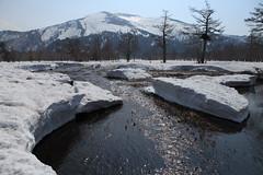 Mt. Shifutsu, Oze National Park (satoson) Tags: winter mountain snow canon mountainclimbing  niigata    fukushima tochigi oze  gunma            ozenationalpark  canon5dmarkii   100famousjapanesemountains mtshifutsu shifutsumountain