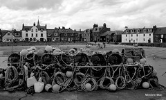 The buoys are back in town (mootzie) Tags: monochrome creels lobster pots ropes buoys harbour knots black white sea stonehaven scotland yachts sails nautical boats