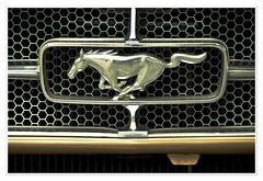 Mustang (Splitti68) Tags: auto car automobil khlergrill rahmen square splittstser splitti splittstoesser splitti68 mustang icon