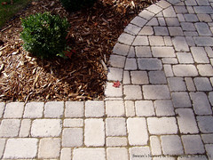 Paver patio detail