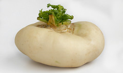 Chinese Turnip from Wenzhou (FotoosVanRobin) Tags: wenzhou turnip brassicacampestris brassicarapa knolraap chineseturnip asianingredients aziatischeingredientennl aziatischeingredinten wenzhoupancai chineseknolraap wnzhupnci   brassicacampestrislssprapiferamatzg brassicarapalssprapiferametzger