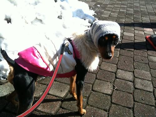 雪をバックに。雪にはあんまり興味がないようだw。