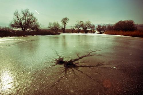 Capa de hielo agrietada