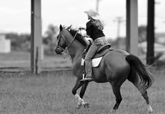 Andando de cavalo (eduhhz) Tags: cy challengeyouwinner duetos a577