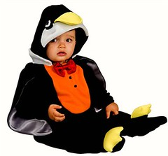 Baby Penguin Costume (In Fashion Kids) Tags: baby cute halloween discount toddler sale unique adorable disney superman newborn superhero wizardofoz clearance buntings scarycostume halloweenspirit halloweenbaby halloweencostumeidea funnycostume princesscostumes fairycostumes infantcostumes cheapcostumes buycostumes babyhalloweencostumes boyscostumes cutecostumes pumpkincostumes babypenguincostume