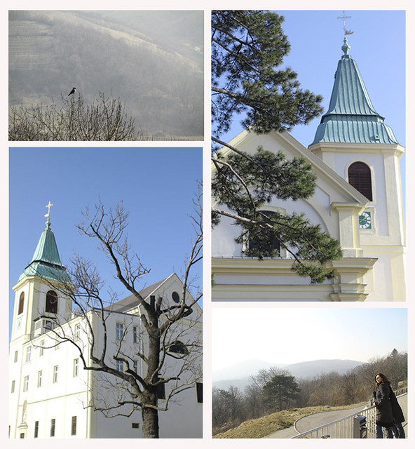 kahlenberg collage