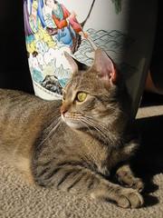 Alert, Savannah, Georgia (COmtneer) Tags: ocean shadow woman sunlight man color green art cat painting georgia ceramic boat eyes waves whiskers gato vase filipino savannah paws chathamcounty