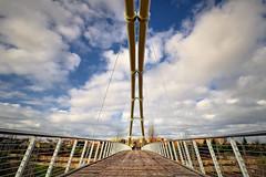 Puente colgante en Bioparc Valencia