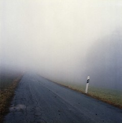second peng (fluffisch) Tags: road winter film fog analog nebel dick pole hasselblad darmstadt suppe kurve vollpfosten fluffisch