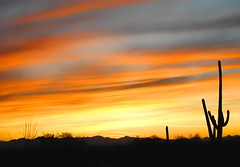 Hope (Scott Hudson *) Tags: usa photography hope nikon tucson az scene googleimages scotthudson gatespass arizonasunset bingimages saturdayinthedesert scotthudsonflickr httpwwwfacebookcomscotthudsoninnjflickr