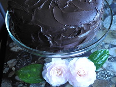 Devil's Food Cake with Midnight Ganache