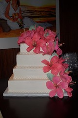 "Hibiscus wedding cake with handmade sugar flowers • <a style=""font-size:0.8em;"" href=""http://www.flickr.com/photos/60584691@N02/5524767861/"" target=""_blank"">View on Flickr</a>"