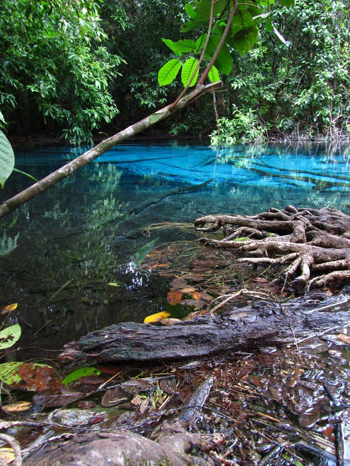 Turquoise Lake - Krabi, Thailand