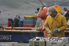 Luego del 27F Chile (Sergio Acevedo Valencia. El hacer, el experimentar) Tags: chile faro mar tsunami carranza olas maremoto maule terremoto pelluhue destrucción loanco