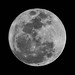 19 Mar 2011 Full (super) Moon