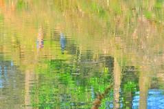 Monet (Argayu) Tags: asturias monet l asturies lugones impresionismo llugones acebera