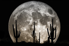 Dream Night in the Desert (J.R.Photography) Tags: moon monument composition photoshop march big tucson magic saturday super astro national astrophotography saguaro lunar 19th 2011 supermoon