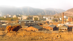 The Future Is Orange, North Korean Border [Film Scan] (flatworldsedge) Tags: china orange cloud brick industry film grass clouds concrete day cloudy border north dry korea bull scan hills plastic hungry bags aps chimneys emaciated dprk jilin tumen hamgyongbukto