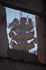 Dnde se par el guila? (Carlows) Tags: mxico df centro ciudad antena nopal telmex chilangolandia snjuan