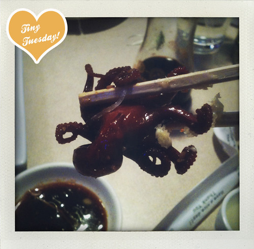 I ate this tiny octopus.