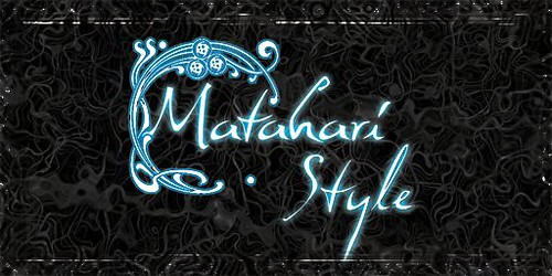 Matahari Style Logo 2010 Shop Sign 512 Opaque