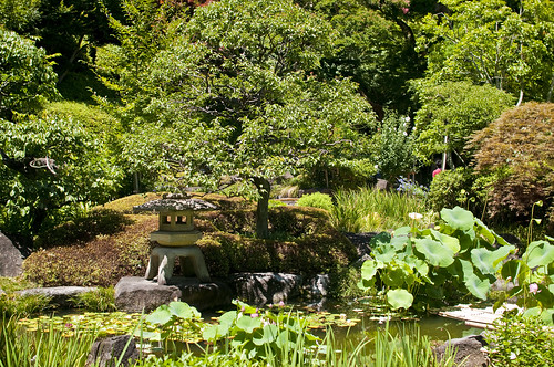Japanese garden at Hasedera temple
