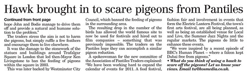Pigeon article2