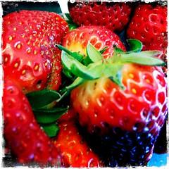 Strawberries (eifreen) Tags: detail rot frucht