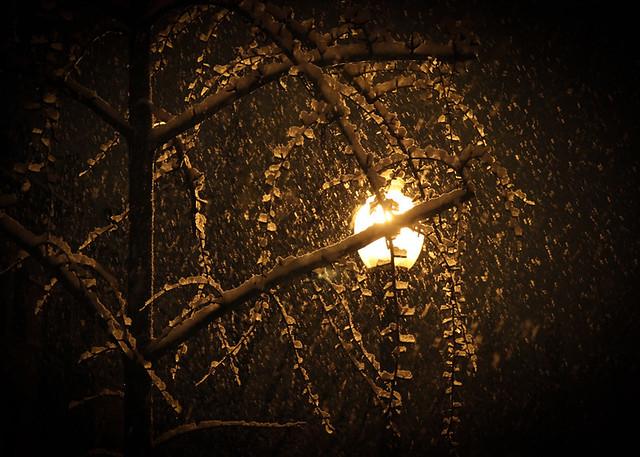Snowy Night Logan Circle Luis Gomez Photos