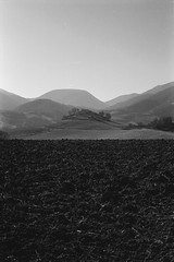 La terra (Blackeyedog) Tags: trees winter light shadow blackandwhite bw mountain black tree f