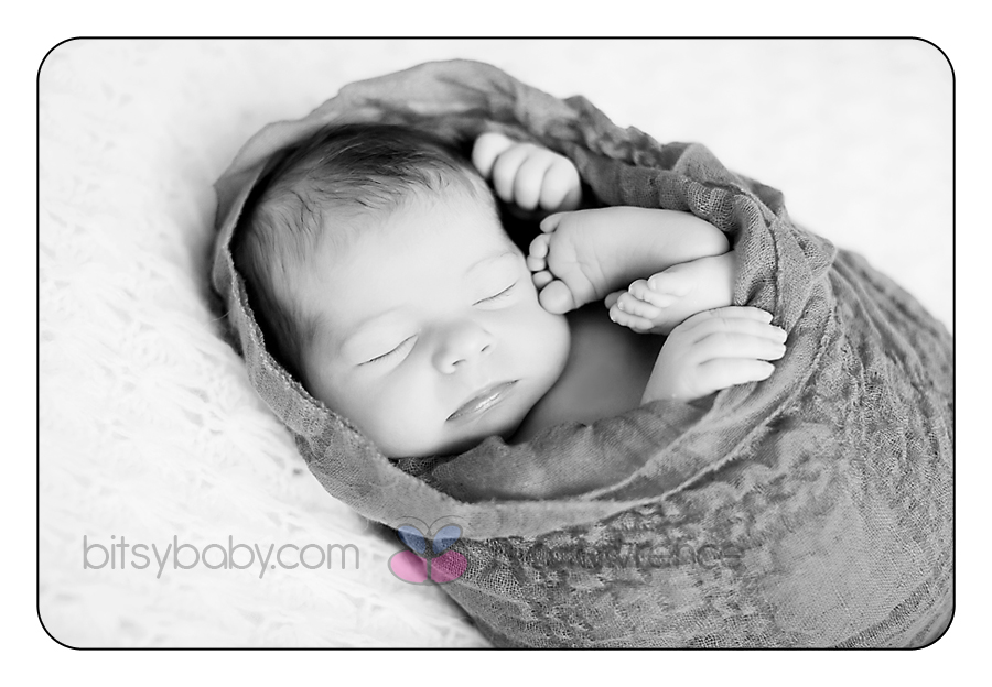 Bitsy Baby Newborn Photographer 1