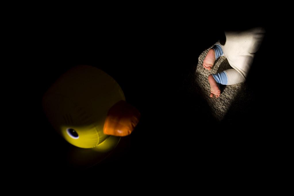 110130_Milo&Duck01