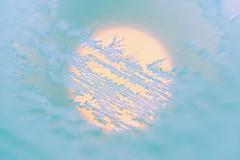 Ghiaccio (AlexLiverani) Tags: morning blue orange sun sunlight blur cold ice alex glass yellow lensbaby composition photographer floor crystal centro central piano first center professional part giallo primo gelato second parma polar sole azzurro freddo luce composer arancione fotografo polare centrale vetro ghiaccio faenza composizione mattino secondo sfocato professionista solare cristalli sfuocatura liverani parziale