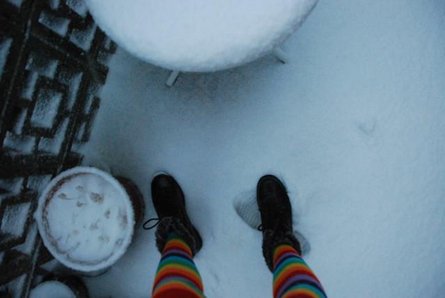 snow junkie