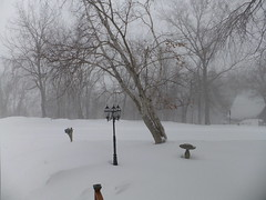 Boonville, MO Blizzard of 2011 by robertstinnett, on Flickr