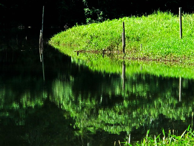 IMG_0243  崑崙浪, 怡保 , Gunung Lang , Ipoh
