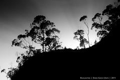 Backlighting (Eneko Garcia) Tags: contraluz backlighting kobaron enekofoto
