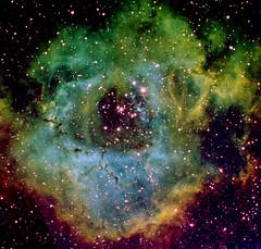 Rosette nebula in HST palette (Mickut) Tags: nebula rosette ngc2237 ngc2244 starlightxpress ngc2238 ngc2239 Astrometrydotnet:status=solved Astrometrydotnet:version=14400 sxvrh18 Astrometrydotnet:id=alpha20110237118446